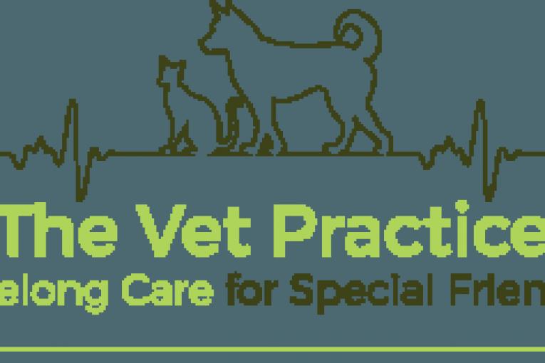 Lifelong-care-for-Special-Friends-logo-300x158
