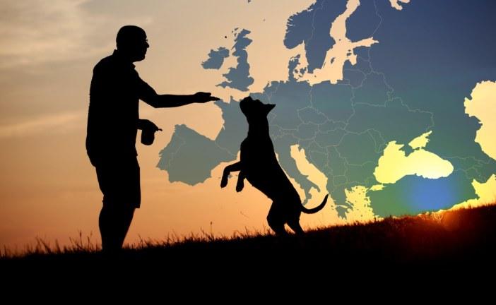 España se adhiere al Convenio Europeo sobre protección de animales de compañía