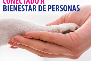 El Bienestar de los animales de compañía y la conexión con el bienestar de las personas