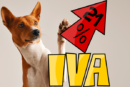 Satisfechos por el acuerdo sobre el IVA veterinario