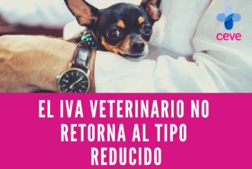 El IVA veterinario no retorna al tipo reducido, de momento.